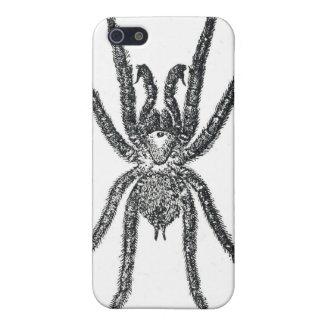 Spider iPhone 5 Case