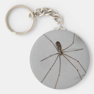 spider keychains