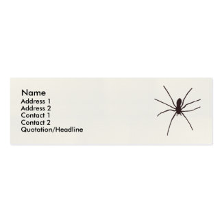 spider mini business card