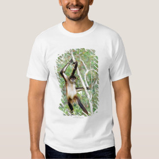 Spider monkey at the Belize Zoo Tshirt