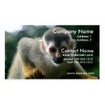 Spider Monkey Business Card