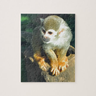 Spider Monkey Jigsaw Puzzles