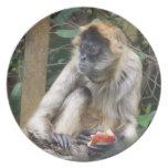 Spider Monkey Melamine Plate