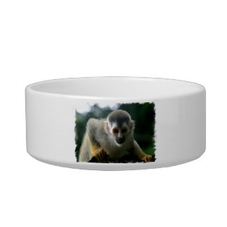 Spider Monkey Pet Bowl