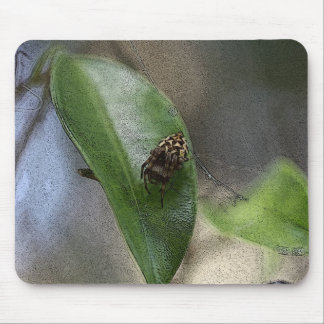 Spider Mouse Pads