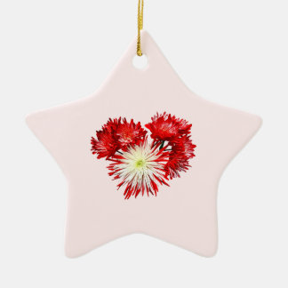 Spider Mum Heart Double-Sided Star Ceramic Christmas Ornament