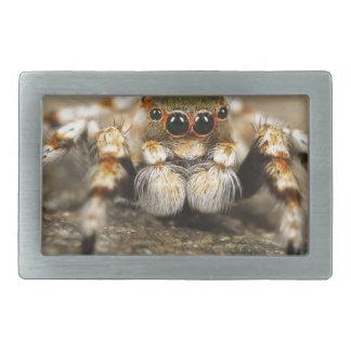 Spider Nature Animals  Wild  insects Rectangular Belt Buckle