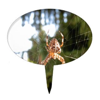 Spider on its web cake topper