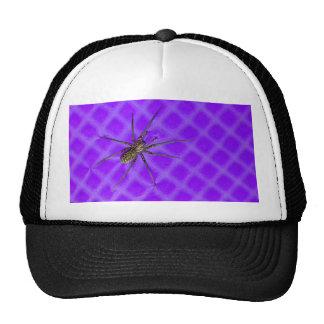 Spider on Purple Cool Halloween Design Mesh Hats