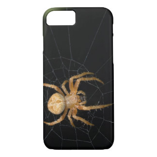 Spider on the spiderweb iPhone 8/7 case