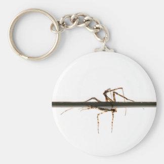 Spider on water basic round button keychain