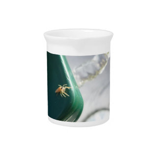 Spider on water foutain beverage pitchers