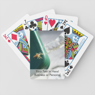 Spider on water foutain bicycle playing cards