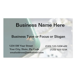Spider on water foutain business card