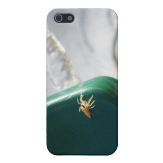 Spider on water foutain cover for iPhone SE/5/5s
