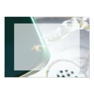 """Spider on water foutain 5"""" x 7"""" invitation card"""