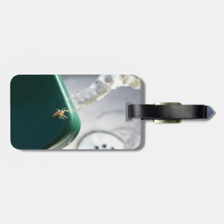 Spider on water foutain luggage tag