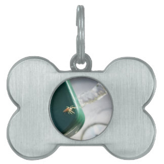 Spider on water foutain pet ID tag