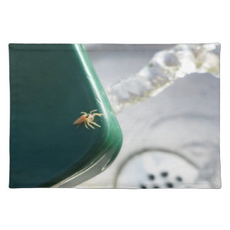 Spider on water foutain place mats
