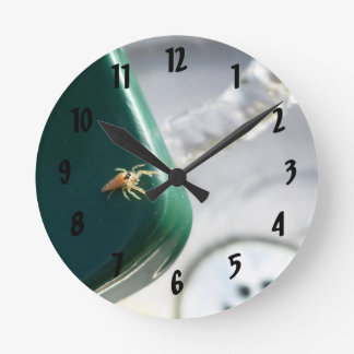 Spider on water foutain round clock