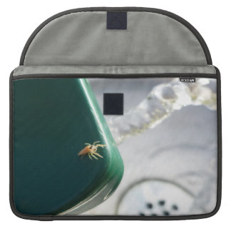 Spider on water foutain sleeves for MacBook pro