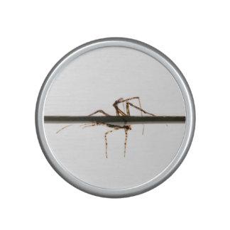 Spider on water speaker