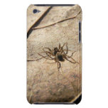 Spider on Weathered Leaf Barely There iPod Covers