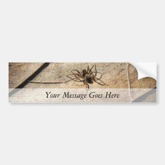 Spider on Weathered Leaf Bumper Sticker