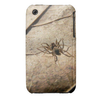 Spider on Weathered Leaf iPhone 3 Case-Mate Case