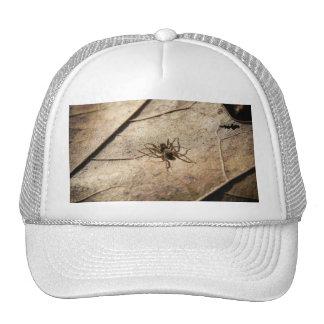 Spider on Weathered Leaf Trucker Hat