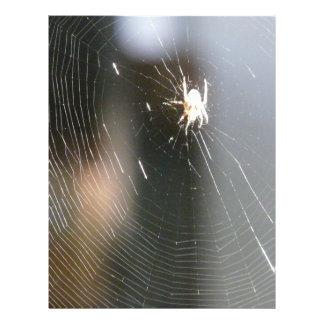 spider on web custom flyer