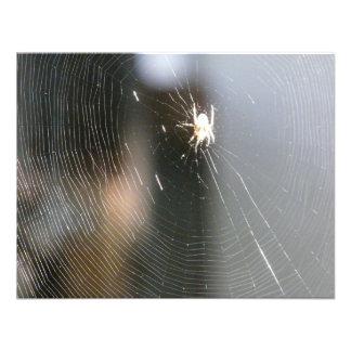 spider on web invitation