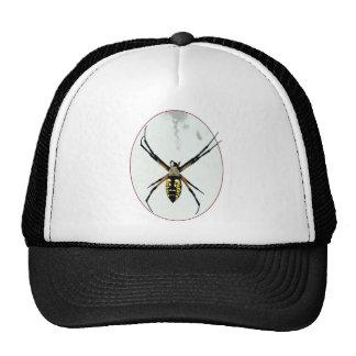 Spider orb yellow black animals wild arachnid trucker hat