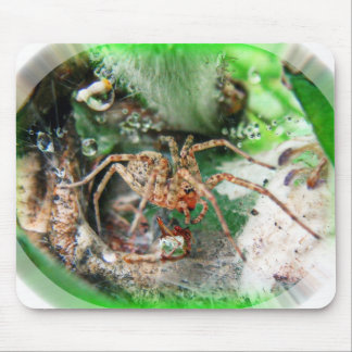 Spider Pad Mouse Pad