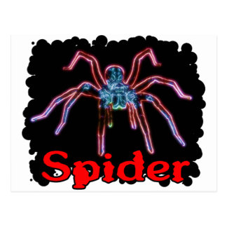 Spider Postcards