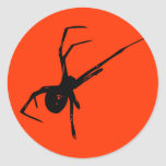 Spider Round Sticker