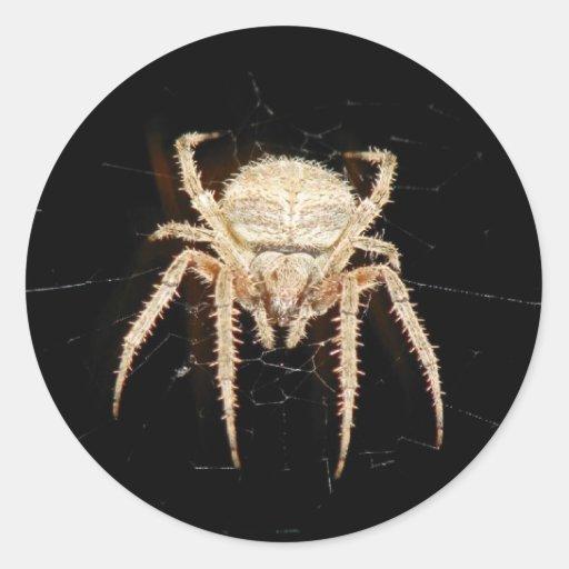 Spider Round Stickers