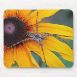 Spider Sitting on a Rudbeckia Mousepad
