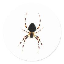 Spider ST Classic Round Sticker