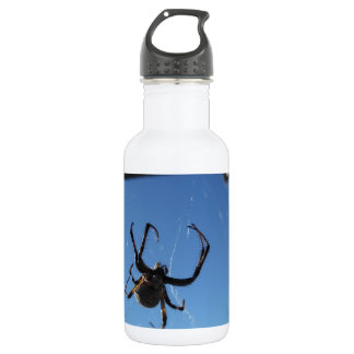 Spider Stainless Steel Water Bottle