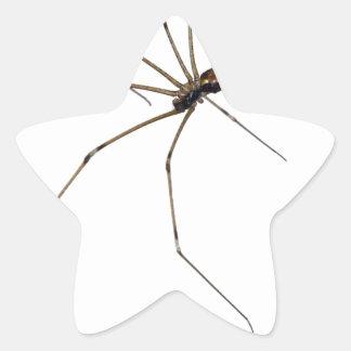 spider star stickers