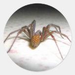 Spider Sticker