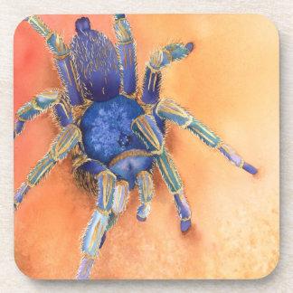 Spider - Tarantula Drink Coaster