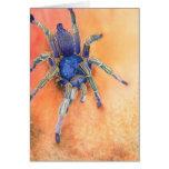 Spider - Tarantula Greeting Cards
