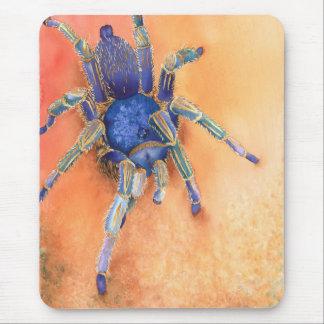 Spider, tarantula mouse pad