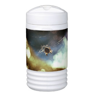 Spider Themed, A Spider Weaving Its Web To Catch T Igloo Beverage Cooler