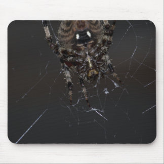 Spider Underside Detail with Flash Mouse Pad