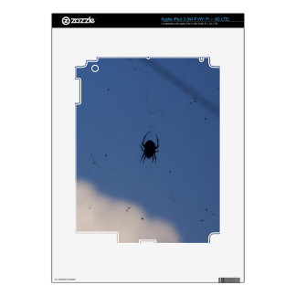 Spider Waiting on a Meal iPad 3 Decals