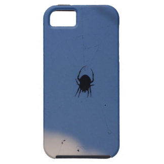 Spider Waiting on a Meal iPhone 5 Case