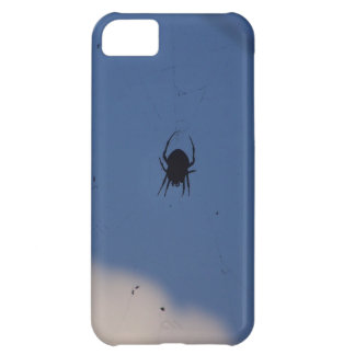 Spider Waiting on a Meal iPhone 5C Cases
